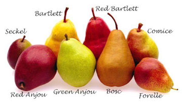 Fresh Featured Fruit For October: PEARS!!!