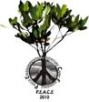 Final Peace 2010